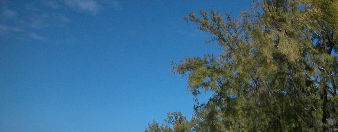 29. Maurícia - Pequeno país insular do Oceano Índico, vizinho de países como Madagascar e as Seychelles, Maurícia tem cenários paradisíacos, com ilhas vulcânicas e uma exuberância natural que se aprecia a cada momento. Mais de 90% do arquipélago é composto pelo território da ilha Maurícia (ou Maurício), principal ilha do arquipélago