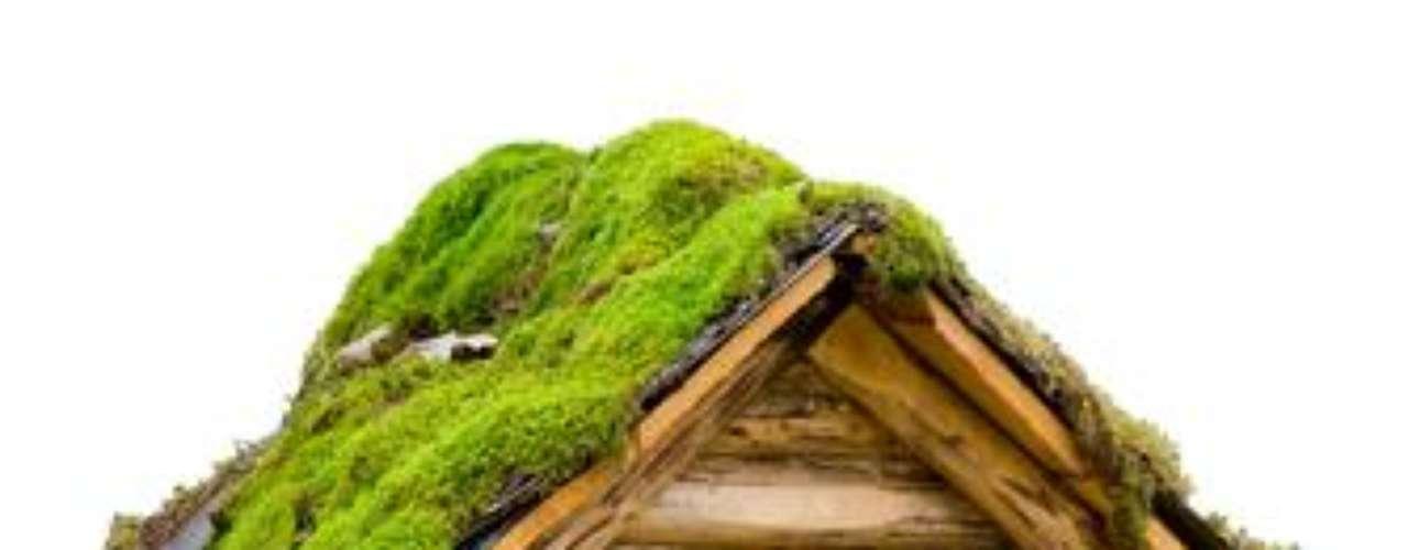 Se o telhado verde é uma tendência para as casas em tamanho natural, imagina para as casinhas de correio...