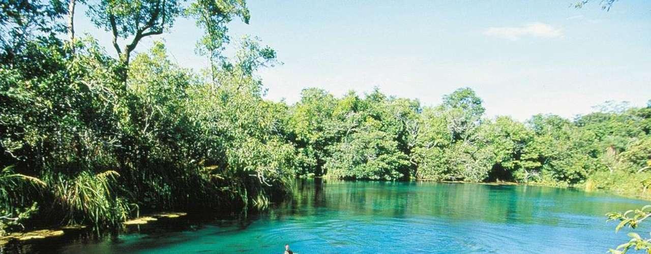 Bonito, Brasil: Bonito, no Mato Grosso do Sul, é um destino perfeito para ecoturistas no Brasil, com rios cristalinos, cachoeiras, cavernas e trilhas. Toda esta beleza pode ser aproveitada em caminhadas, mergulhos, rafting e passeios com muita aventura. Um clássico: o mergulho em cavernas, uma experiência única