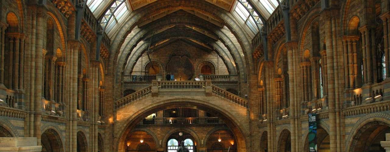 Museu de História Natural, Londres, Inglaterra - Situado no bairro de South Kensington, o Museu de História Natural de Londres tem mais de 70 milhões de itens, incluindo diversos espécimes coletados por Charles Darwin. Originalmente, a coleção era parte do Museu Britânico, mas o ganhou seu próprio espaço em 1881