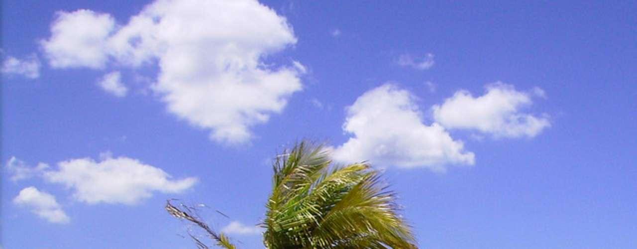 15)  Praia de Camburi, ES: única praia continental de Vitória, no norte da cidade, Camburi tem 6 km de extensão com um calçadão onde as pessoas correm, patinam e andam de bicicleta. Urbanizada e arborizada, a praia é a principal da cidade, ponto de encontro dos habitantes da capital do Espírito Santo nos dias de sol