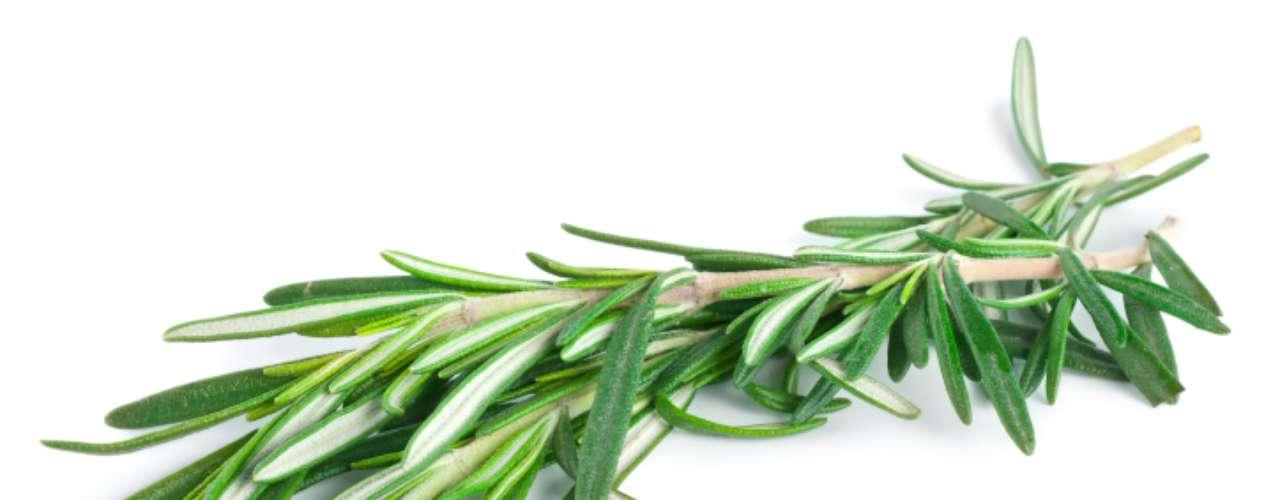Alecrim: as folhas pontudas e estreitas de cor verde escura e aroma perfumado combinam bem com carnes bovina e suína. A versão fresca pode ser usada à vontade, mas a seca tem sabor forte e marcante. É um dos temperos naturais com as maiores variedades de nutrientes. Rico em cálcio, magnésio e potássio, o alecrim tem também boa quantidade de fósforo e ferro, e uma pequena quantidade de zinco, cobre, manganês e selênio. Nas vitaminas, é ainda rico em vitamina A e C, tendo uma pequena quantidade de tiamina, riboflavina, niacina, vitamina B6 e folato