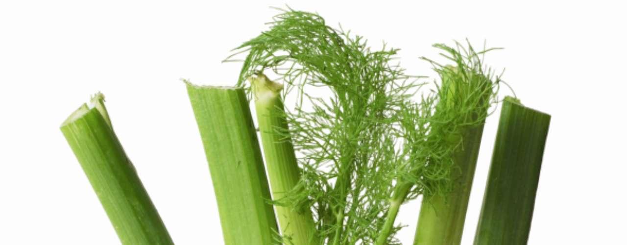 Erva-doce: também conhecida como funcho. Dessa erva se aproveitam os talos, raízes, folhas e grãos, para pratos com peixes, costeletas, sopas, molhos, saladas e até sobremesas