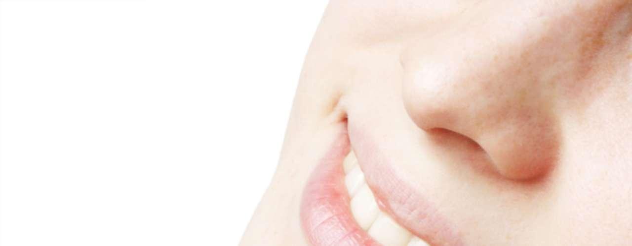 Com ação antioxidante, manteiga de karitê previne contra o ressecamento da cútis