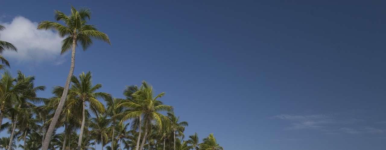 Punta Cana, República Dominicana - O pacote de sete noites com sistema all inclusive da Nascimento Turismo inclui passagens aéreas, traslados, guia em português, assistência 24 horas e seguro viagem e sai por 12 vezes de R$ 380