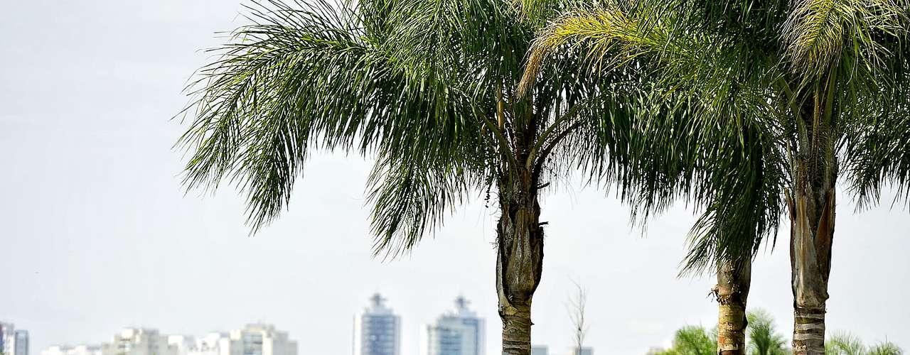 8 de janeiro - População aproveitou a manhã ensolarada nos parques de São Paulo
