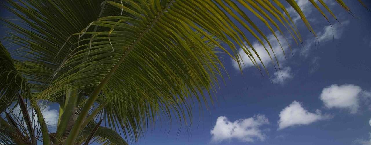 As Ilhas Virgens Britânicas são compostas por mais de 50 ilhas, sendo as maiores delas Tortola, Anegada e Virgin Gorda. Todas têm praias incríveis, mas Virgin Gorda se destaca por suas grandes formações rochosas de granito conhecidas como Baths, formando lindas piscinas naturais