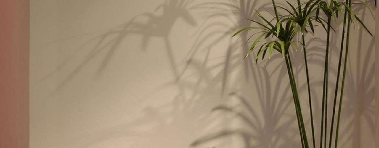 Hôtel Saint-Barth Isle de France, Saint Barts: no Isle de France Spa, os hóspedes têm produtos da Natura Bissé e da Intraceuticalspara cuidados da pele, e um time de profissionais que oferece tratamentos faciais e corporais