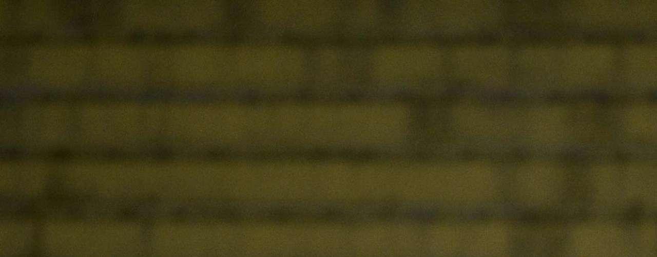 Guerrero formou dupla de ataque com Alexandre Pato