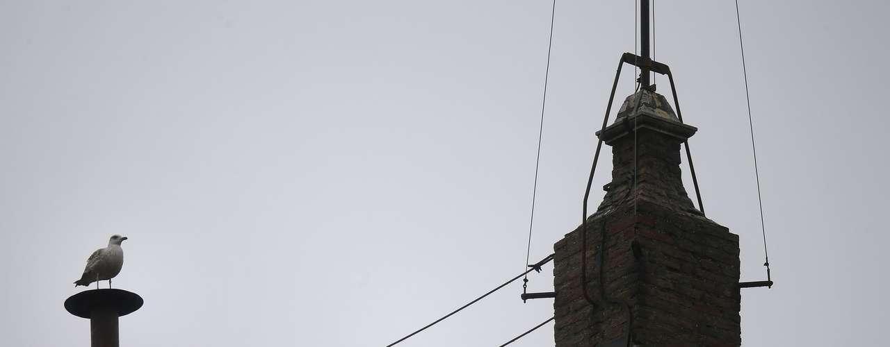13 de março - O pássaro foi flagrado por fotógrafos e pelas câmeras de televisão por volta das 12h30