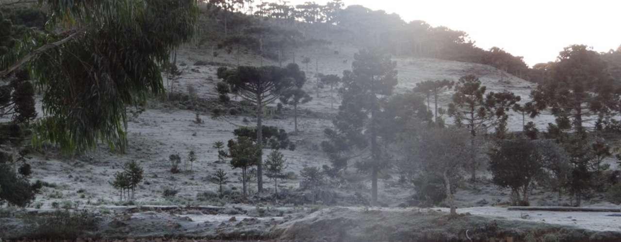 8 de maio - Termômetros marcaram -6,2º C em Urupema, na serra catarinense, nesta quarta