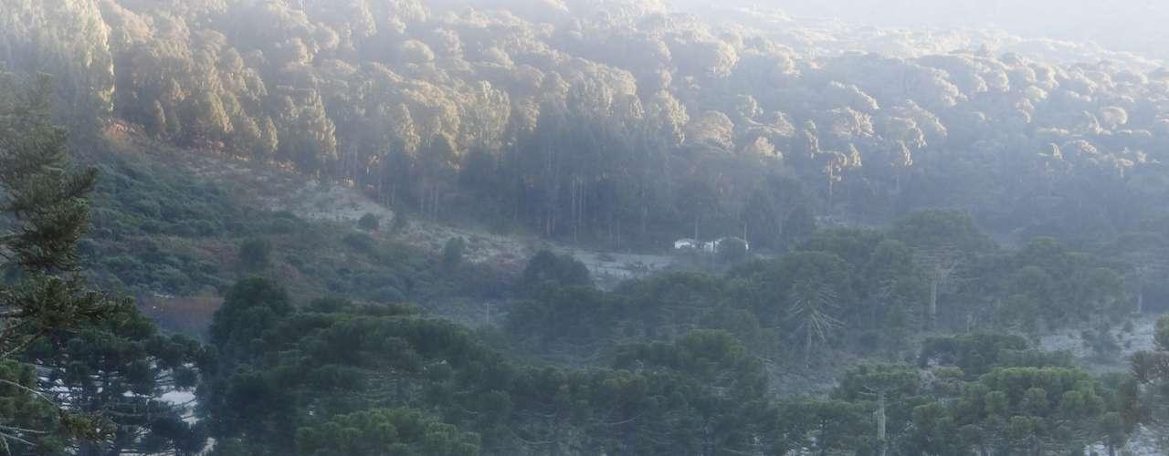 4 de junho - Frio intenso contribuiu para a formação de geada emUrupema, na região serrana de Santa Catarina, nesta terça-feira