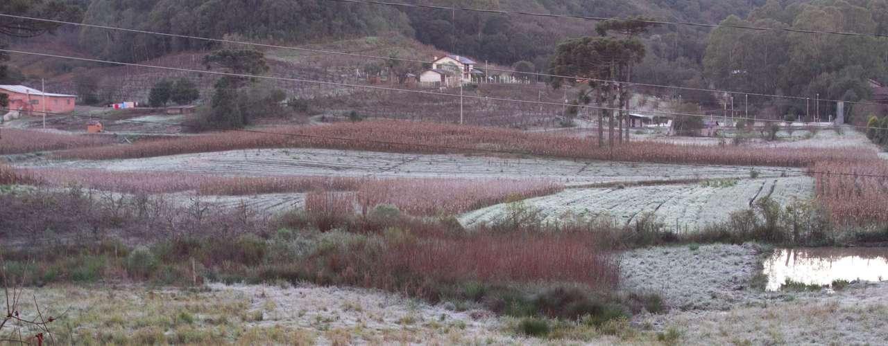 2 de julho Em Caxias do Sul, na serra gaúcha, a geada deixou os campos brancos na manhã de hoje