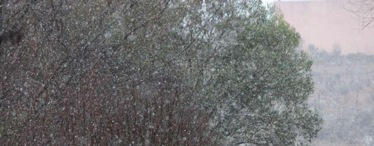 14 de agosto - São Joaquim voltou a registrar neve no inverno deste ano em Santa Catarina