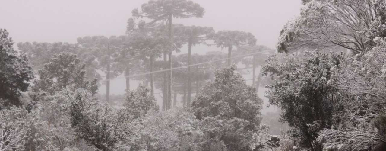 27 de agosto - Muita neveem São Joaquim (SC) entre a segunda e a terça-feira