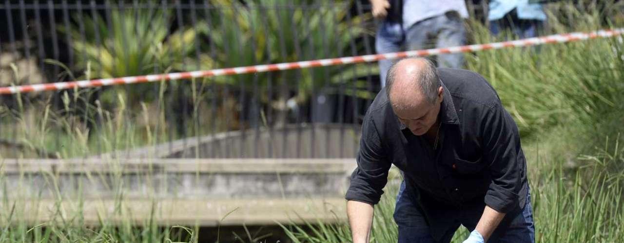 Uma cabeça foi encontrada na praça da Sé, na região central de São Paulo