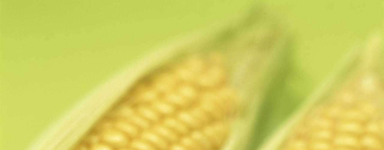 Milho - O milho, além de outras fontes como amido de milho, óleo de milho e farinhas à base do grão podem acarretar problemas alérgicos