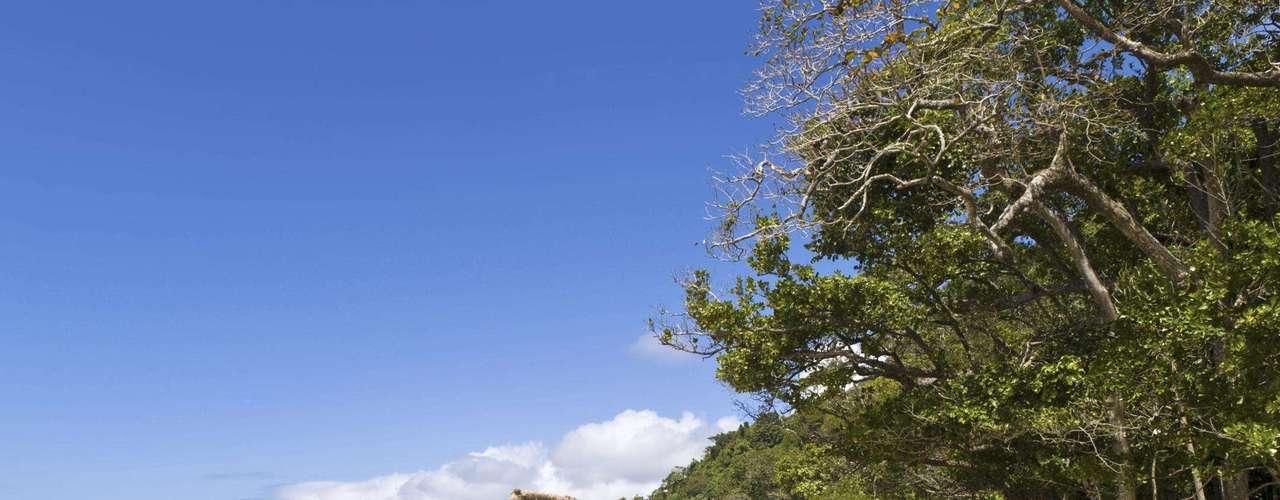 4. Cape Tribulation, Austrália - A 110 km da cidade de Cairn, no nordeste da Austrália, Cape Tribulation é um dos mais belos pontos do litoral do país. Com apenas pequenas pousadas para mochileiros e eco-turistas e muita natureza virgem, Cape Tribulation é um destino absolutamente único