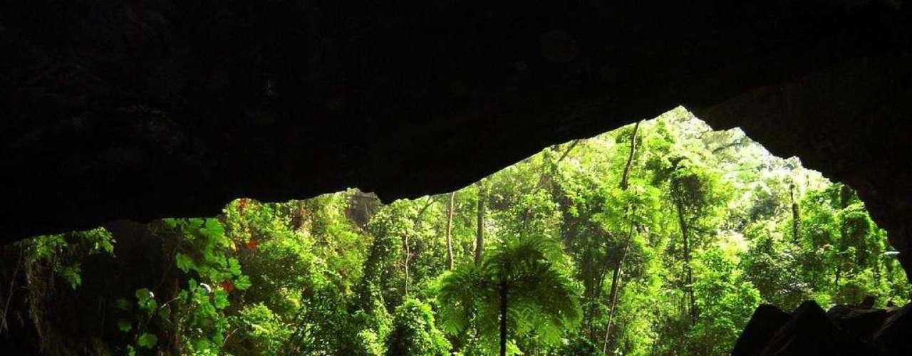 Parque Estadual Turístico Alto da Ribeira, Brasil: a 330 km de São Paulo, o Parque Estadual Turístico Alto da Ribeira (PETAR), tem cerca de 36 mil hectares com Mata Atlântica, cachoeiras, rios e, principalmente, mais de trezentas cavernas. Acompanhados de monitores, os visitantes podem percorrer várias delas, passando por rios subterrâneos, em meio a estalagmites e estalactites, e grandes salões com formações rochosas