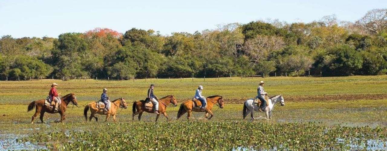 Pantanal, Brasil: nada como mostrar aos seus filhos o valor da natureza numa das áreas de maior biodiversidade do Brasil. Caminhadas, trilhas, cavalgatas e passeios de caiaque podem ser realizados no Pantanal, avistando animais como macacos, tamanduás, capivaras, araras azuis, e muitos outros. Hospedagens  como a Pousada Piuval, e suas 7 mil hectares de fazenda, recebem os visitantes com conforto e muitas opções de atividades