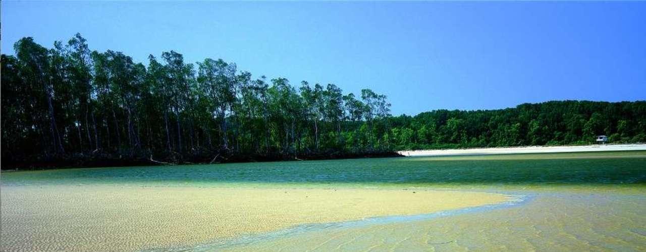 Ilha do Marajó, PA: famosa por sua pororoca - grande onda criada pelo encontro das águas - e pela grande quantidade de búfalos usados para carga e transporte, a Ilha do Marajó fica no encontro entre o Atlântico e os rios Amazonas e Tocantins. Praias, lagos, dunas e florestas fazem parte deste santuário ecológico