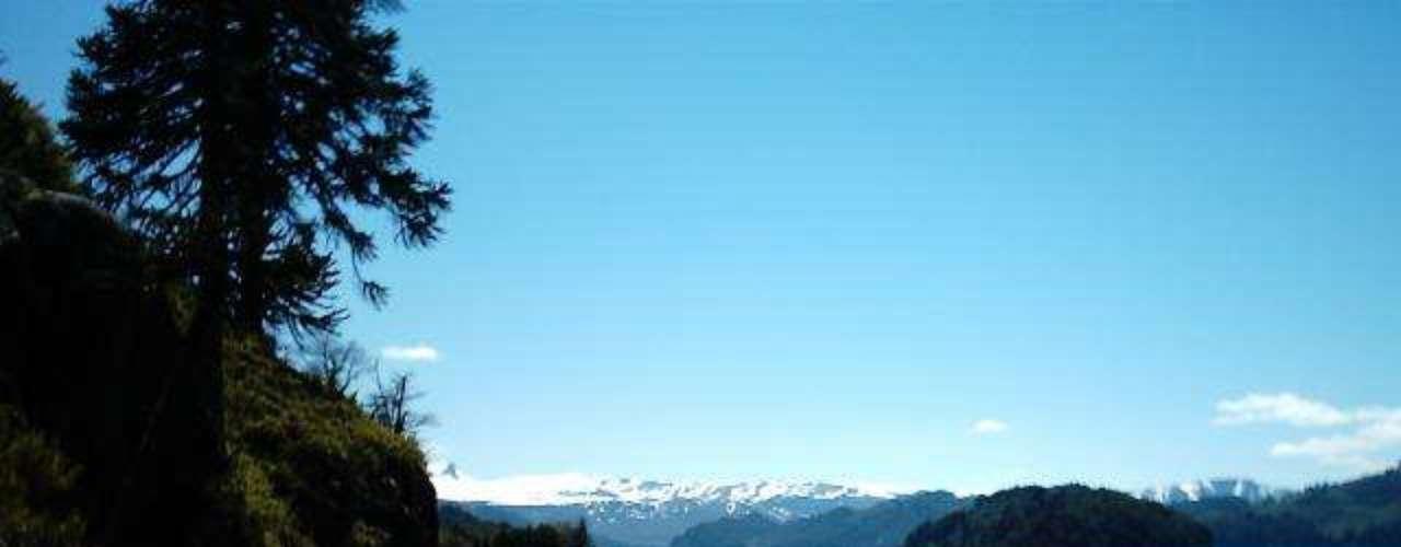 Lago Moquehue, Argentina: a Patagônia argentina tem belos lagos cristalinos cercados de pinheiros com os picos nevados dos Andes ao fundo. Próximo à fronteira com o Chile, na província de Neuquén, o Lago Moquehue é um espelho dágua remoto e protegido, com águas puras e áreas para acampar
