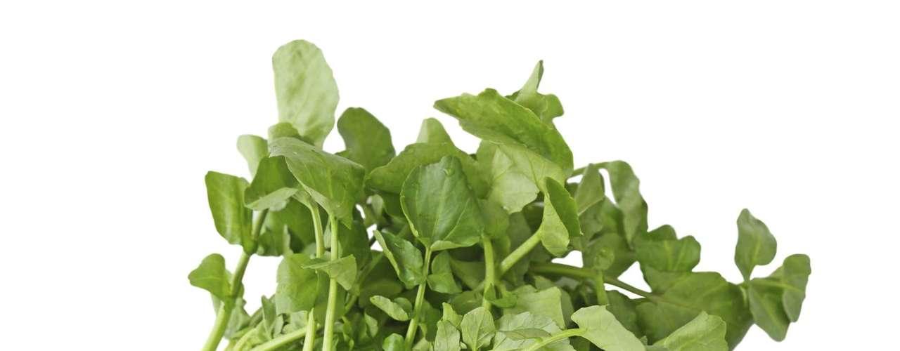 Agrião: rico em ferro, iodo, vitamina C e betacaroteno - um antioxidante que retarda o envelhecimento -, o agrião auxilia no sistema respiratório