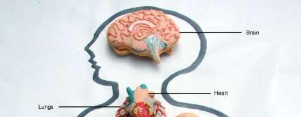 Macarons inspirada em partes do corpo humano