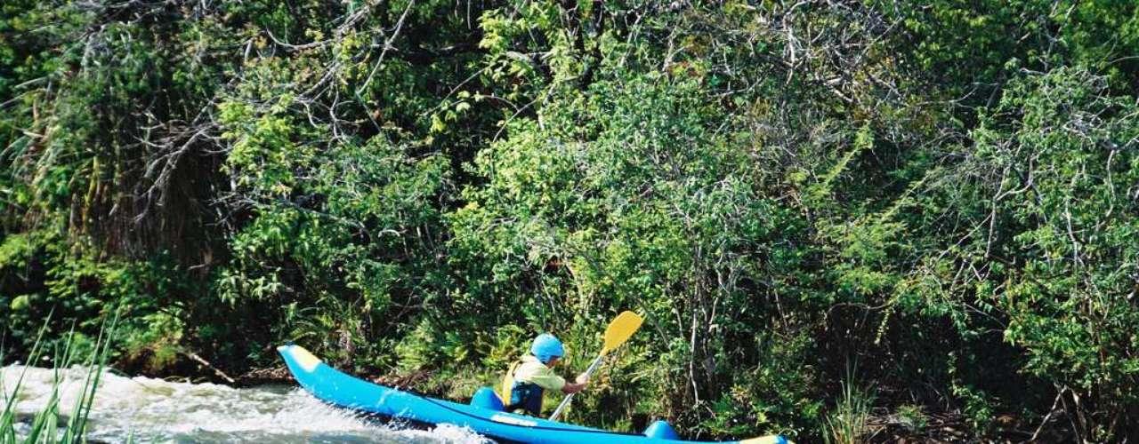 Brotas: centro de esportes radicais e ecoturismo, Brotas oferece diferentes atividades, como rafting, bóia-cross, tirolesa e trekking, em meio a rios, trilhas e cachoeiras. A Cachoeira dos Quatis e a Cachoeira Santa Maria, com suas belas piscinas naturais, são algumas das atrações desta cidade a 235 km de São Paulo