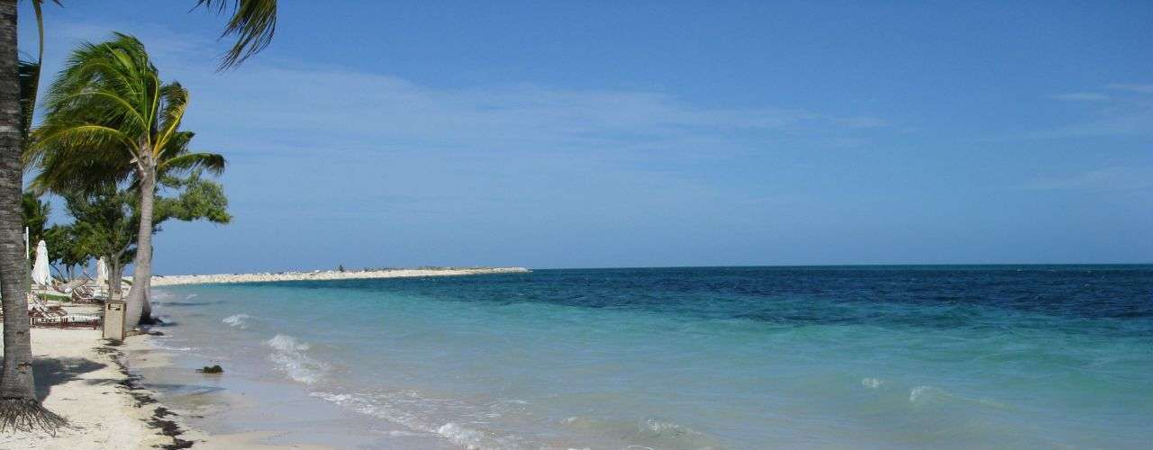 West End, Bahamas: o Caribe tem praias paradisíacas que se encontram entre as melhores do planeta, mas também oferecem certos perigos a seus visitantes.  Apesar dos raros ataques, Bahamas tem uma abundante presença de tubarões, como tubarão-martelo e tubarão cabeça-chata. A área de West End, na ilha de Grand Bahama, é conhecida pelos mergulhadores e os numerosos tubarões-tigre