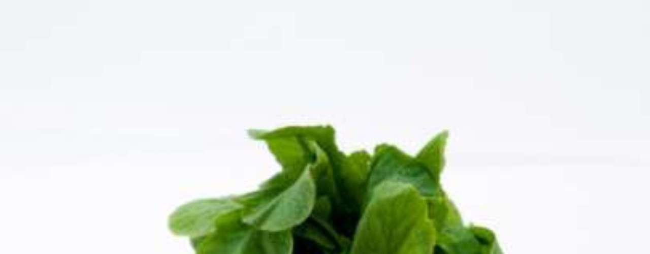 Rabanetes (19 calorias por xícara) - este vegetal colorido é rico em potássio, ácido fólico e outros componentes que ajudam na digestão. Vale lembrar que ele está também entre os tops das folhas verdes, que têm seis vezes mais vitamina C e cálcio do que as raízes