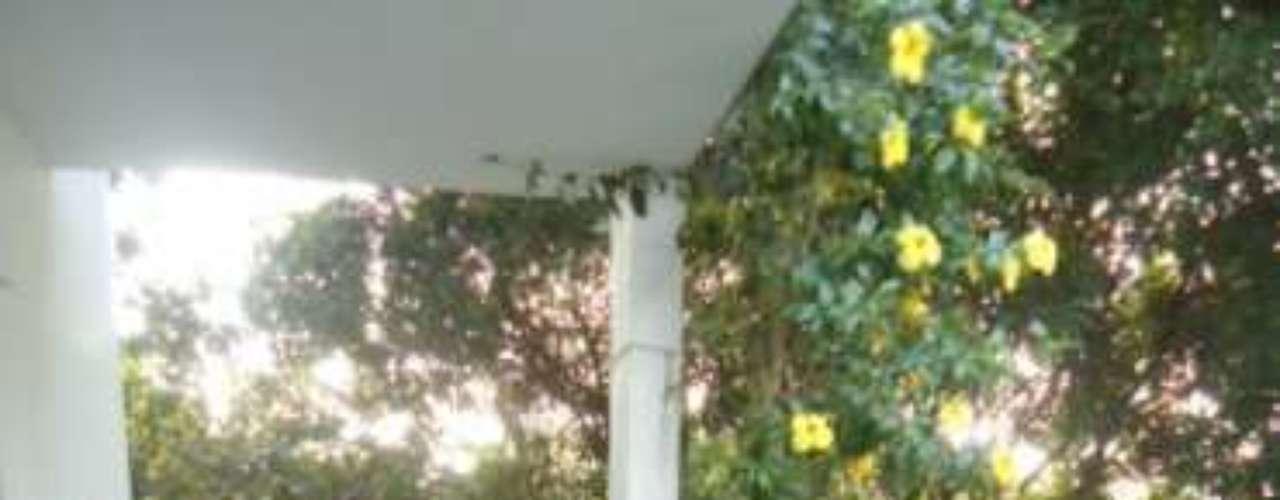 Para aproveitar a sombra da varanda, foi colocada uma rede, que veio direto do Nordeste