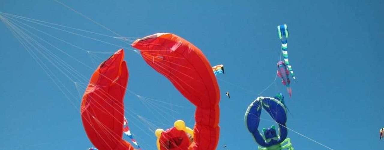 Pipas, Boca Beach Club, Boca Raton: o hotel surpreende seus hóspedes com um show de pipas coloridas em formato de lagosta gigante, ursos, tartaruga entre outros. Aqui também é possível ter aulas de como soltar as pipas e levá-las para casa. As crianças ainda podem se divertir andando sobre as águas dentro de uma bola gigante