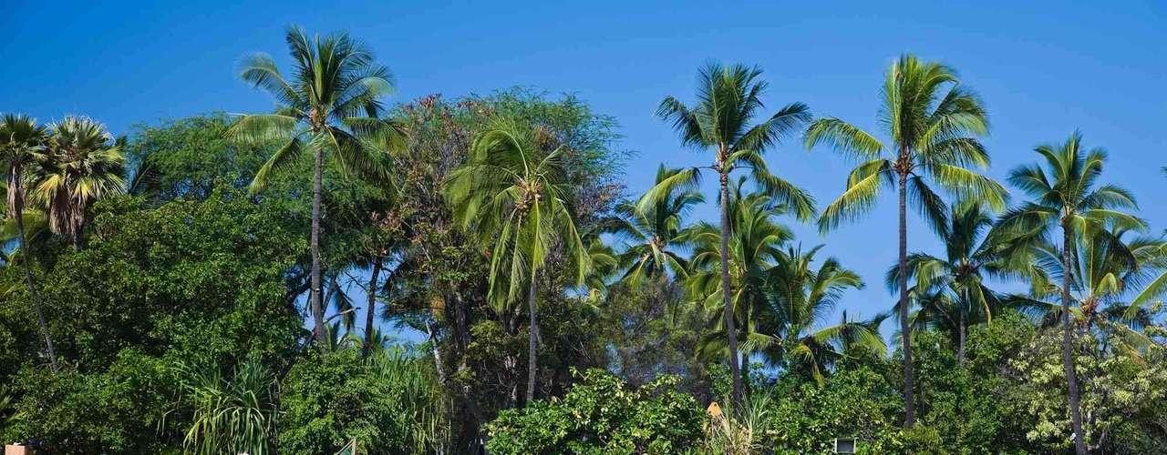Maior das ilhas havaianas com mais de 10 mil km² Big Island é composta em boa parte de rocas vulcânicas resultado do ativo vulcão Kilauea. Longe do agito de pontos mais urbanos do Havaí, como Honolulu, Big Island tem uma cultura rural e um verdadeiro espírito local, sem deixar de contar com resorts de luxo para viagens inesquecíveis