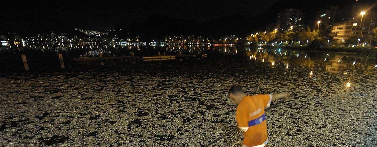 Funcionários da Comlurb trabalham em turnos para retirar os peixes da lagoa