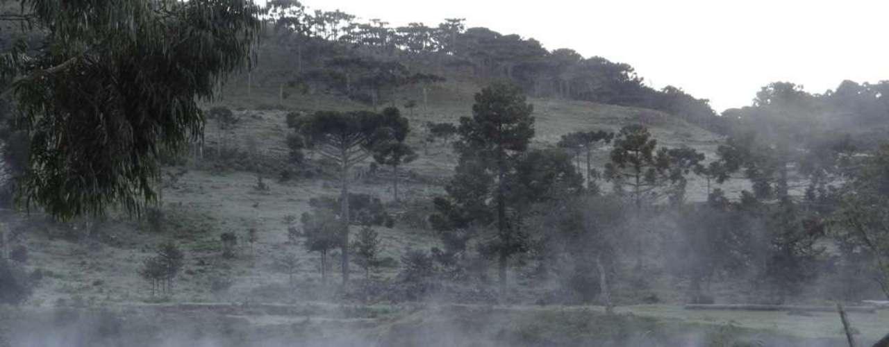 14 de abril Santa Catarina registroutemperatura negativa na madrugada deste domingo em Urupema, na serra
