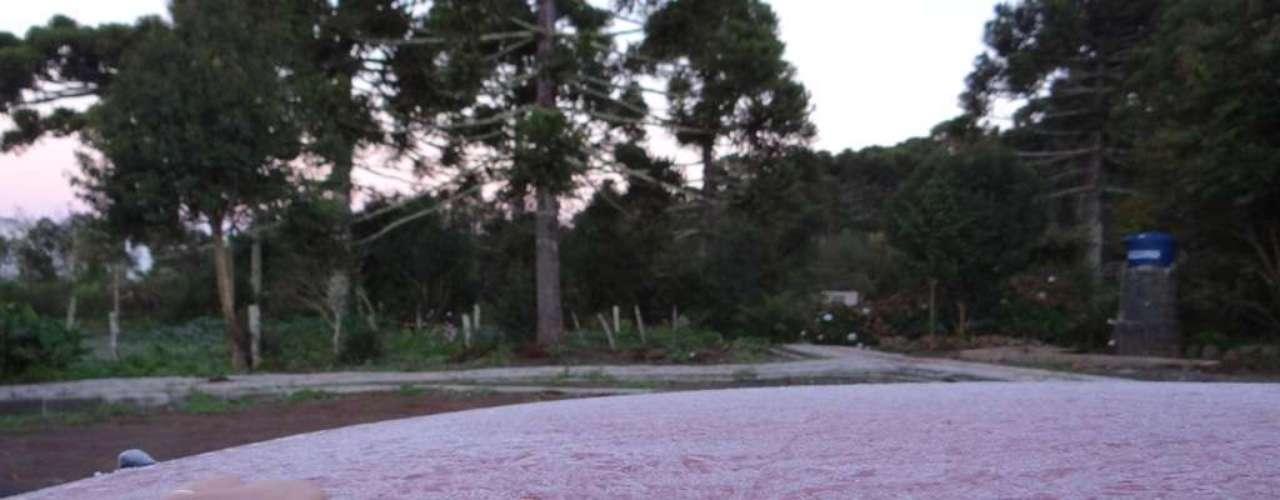 14 de abril Onda de frio na serra catarinense favoreceu a formação de geada