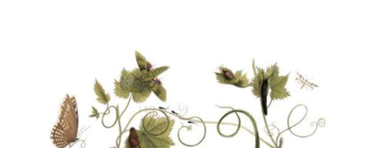 2 de abril - 336º aniversário de Maria Sibylla Merian, naturalista e ilustradora científica (global)