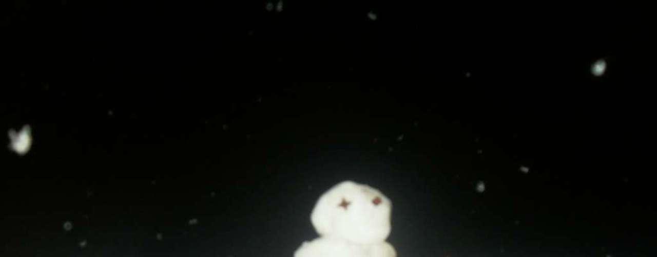 22 de julho - Quantidade de neve foi suficiente para fazer bonecos em Palmas-PR