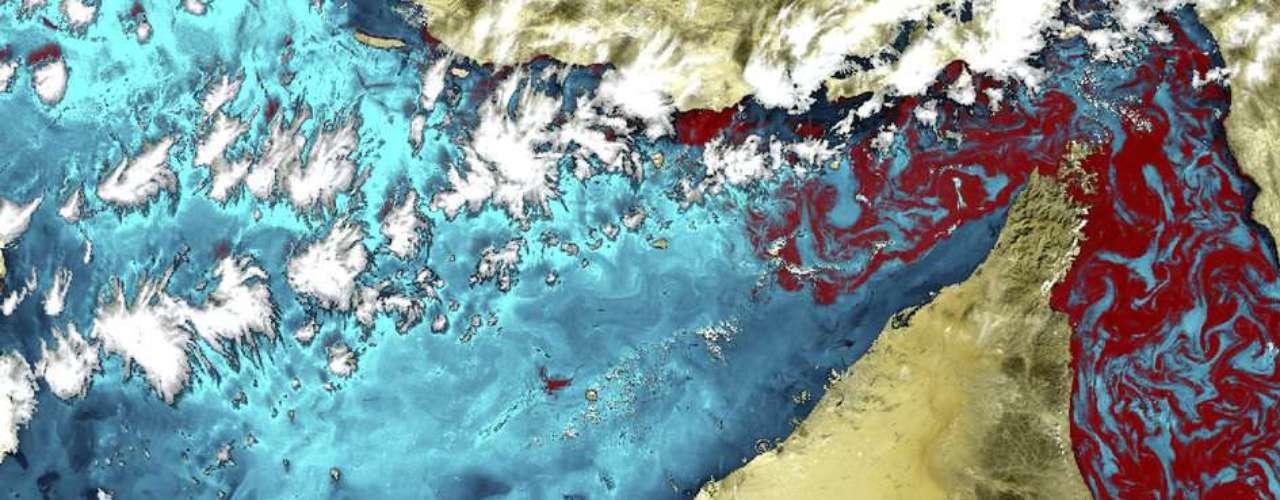 A costa dos Emirados Árabes Unidos abriga algumas das maiores usinas de dessalinização do mundo. Em uma área do Oriente Médio que sofre com escassez de água, as usinas ali produzem bilhões de litros de água por dia. A água liberada por esse processo pode afetar o ecossistema costeiro, em particular por meio de um fenômeno conhecido como \