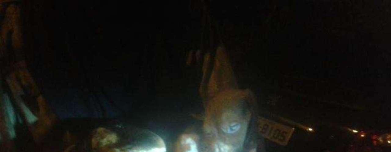18 de outubro -Imagem mostra beagle supostamente congelado em nitrogênio encontrado por ativistas no laboratório