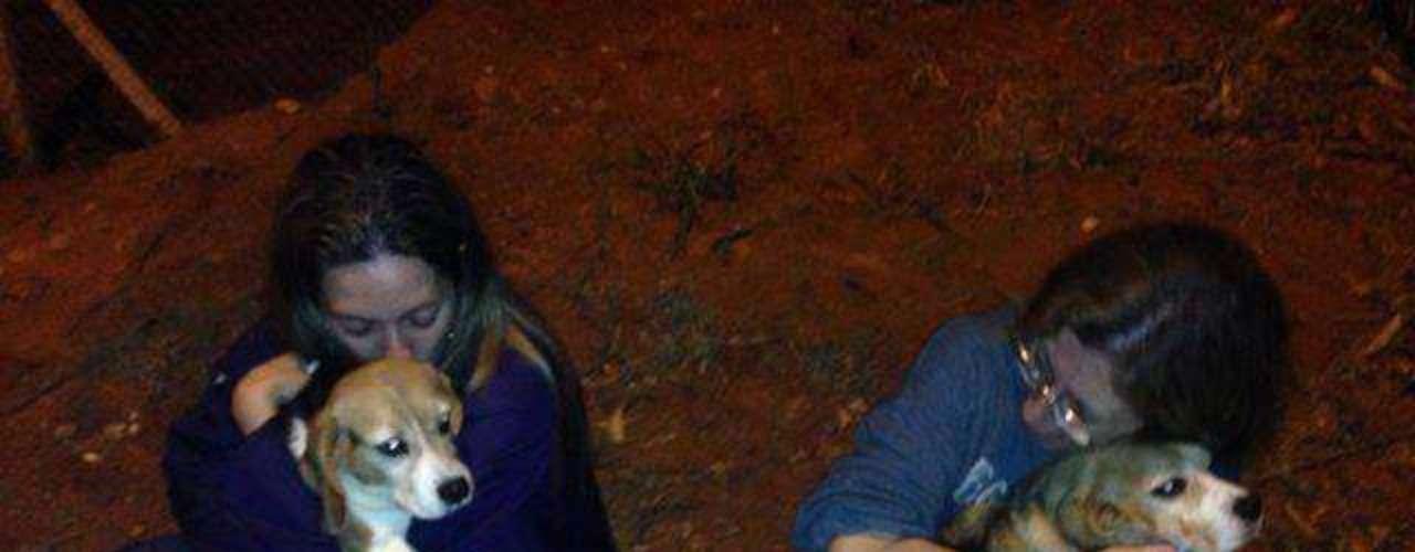 18 de outubro -Ativistas fazem carinho em cães