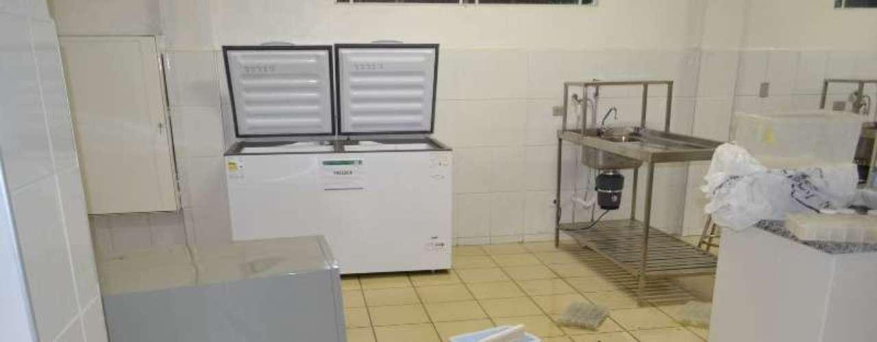 18 de outubro -Internauta registra interior do Intituto Royal, acusado de maltratar animais em pesquisas científicas
