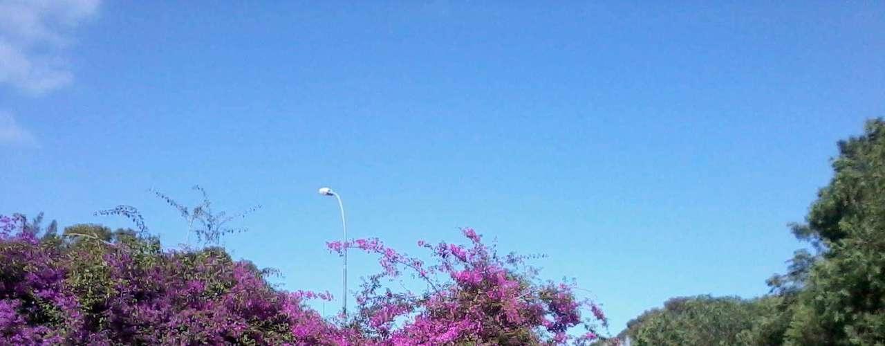 28 de outubro - Após amanhecer com frio, sol elevou a temperatura para 25ºC em Porto Alegre