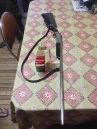 Homem utilizou uma espingarda para matar o animal Foto: Brigada Militar / Divulgação
