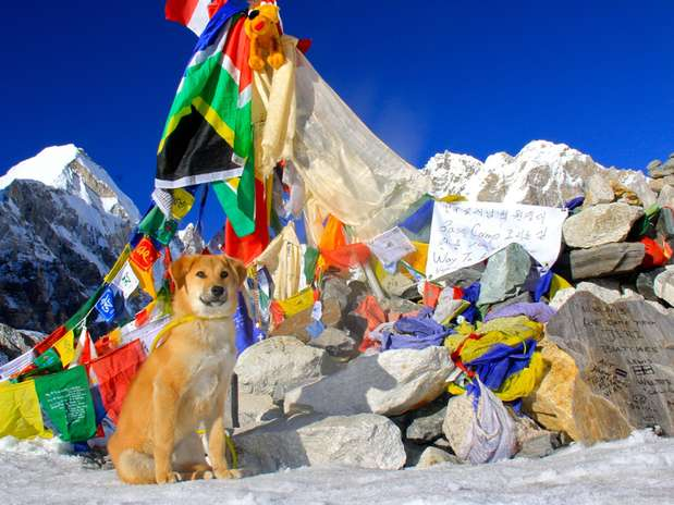 Rupee no acampamento base do Everest no Nepal Foto: AFP
