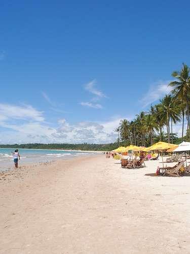 Lugares de muito movimento, a Praia dos Coqueiros e Praia dos Nativos atraem visitantes em busca de badalação e beleza