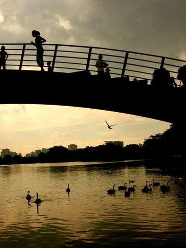 6. Parque do Ibirapuera - \