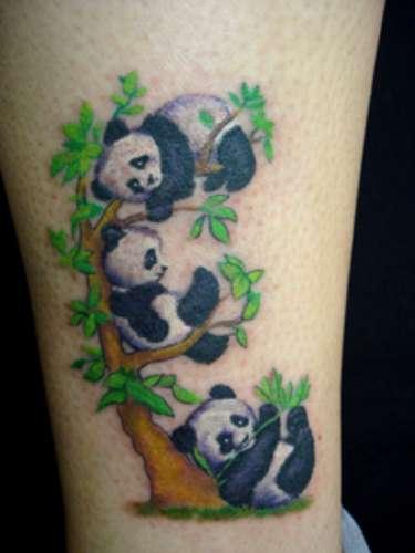 Pequenos pandas desenhados noLed's Tattoo