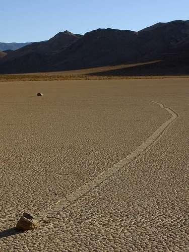 Dessa maneira, elas podem facilmente ser levadas pelos fortes ventos dos desertos